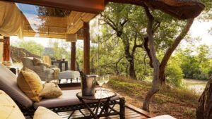 sanctuary makanyane lodge madikwe