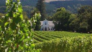 Chamonix Wine Farm