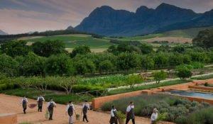 wine farm babylonstoren