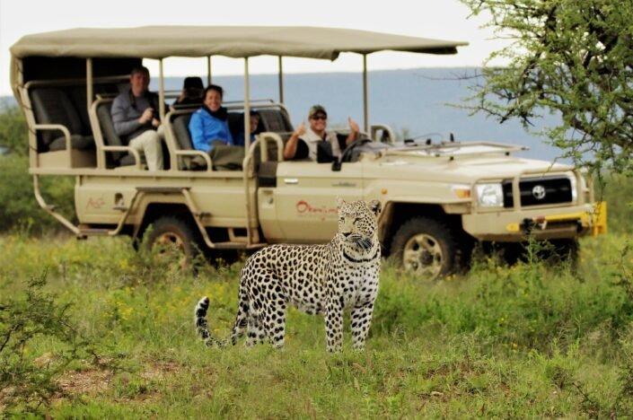 African family safaris 1