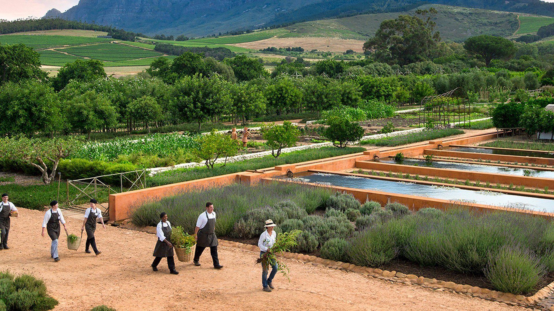 babylonstoren-wine-farm.jpg