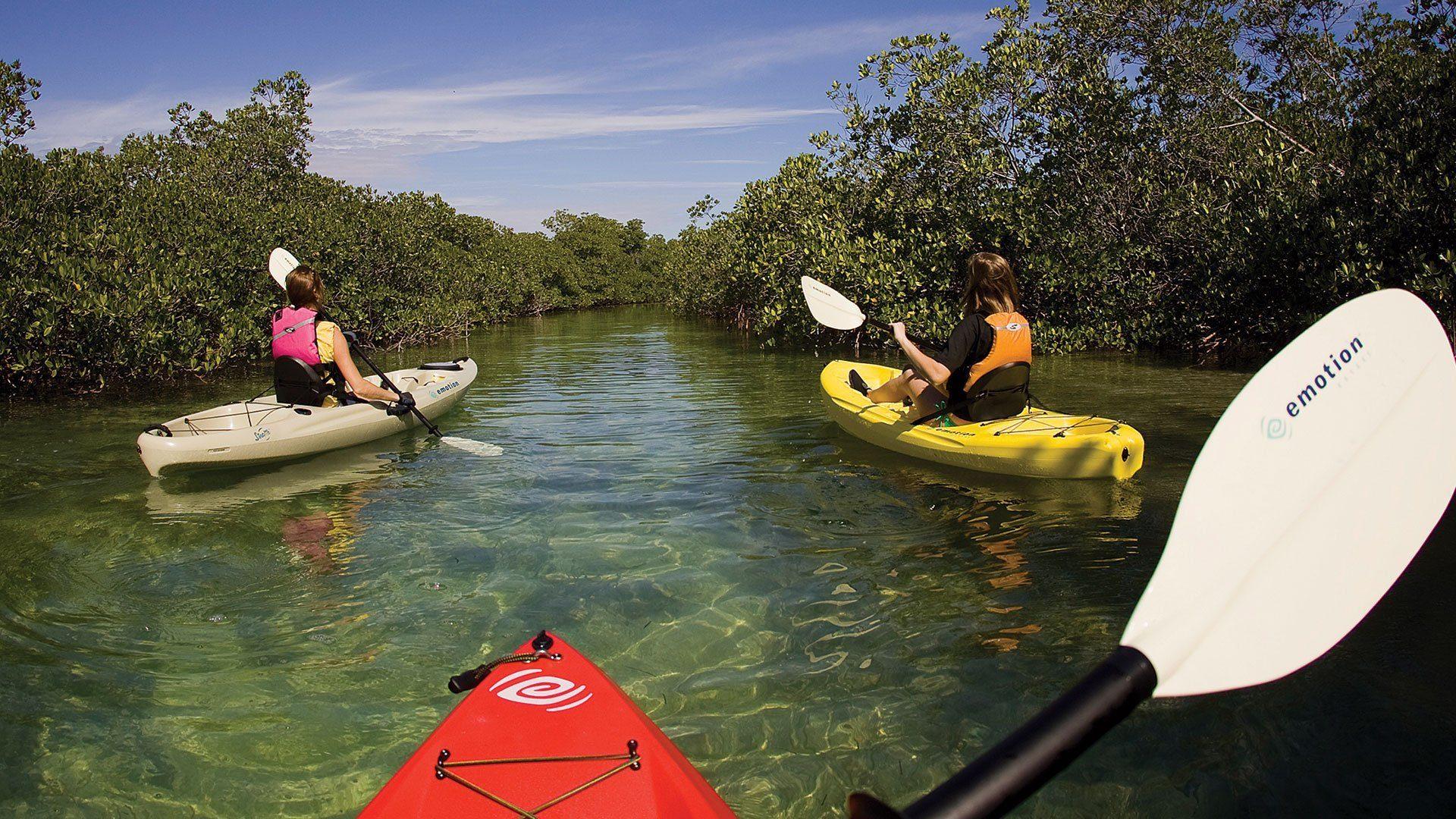 kayaking-st-lucia-kwazulu-natal.jpg