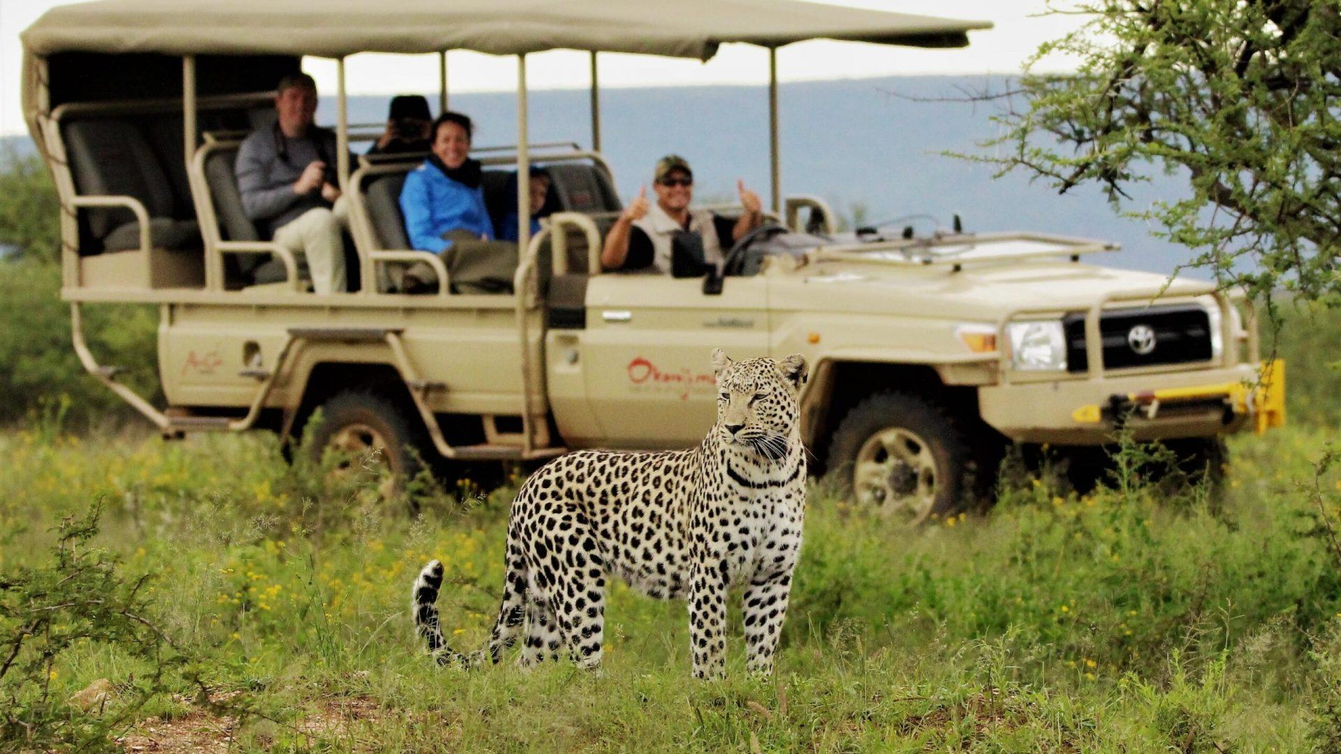 kenya family safari options